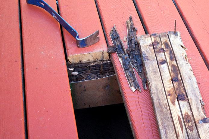 Broken and rotting deck board